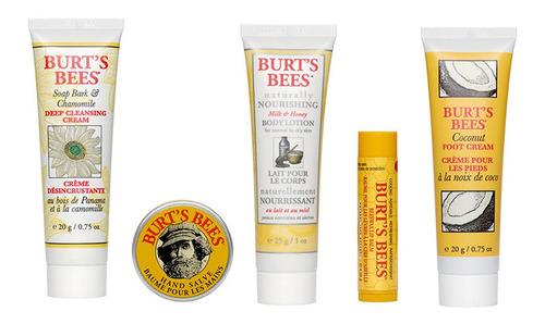 burt's bees essentials kit