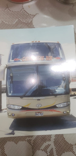 bus interprovincial año 2011