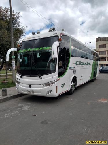 buses buses