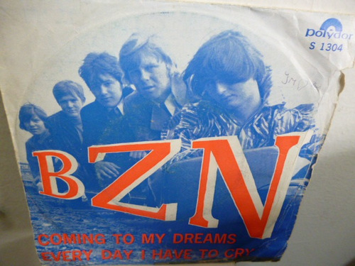 bzn coming to my dreams simple holandes c/tapa