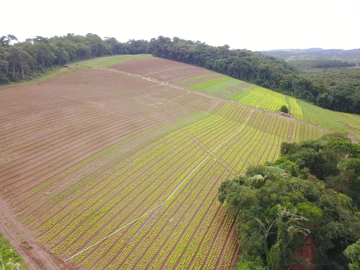 c. lotes de 1.200 m2 por apenas 33 mil em ibiuna