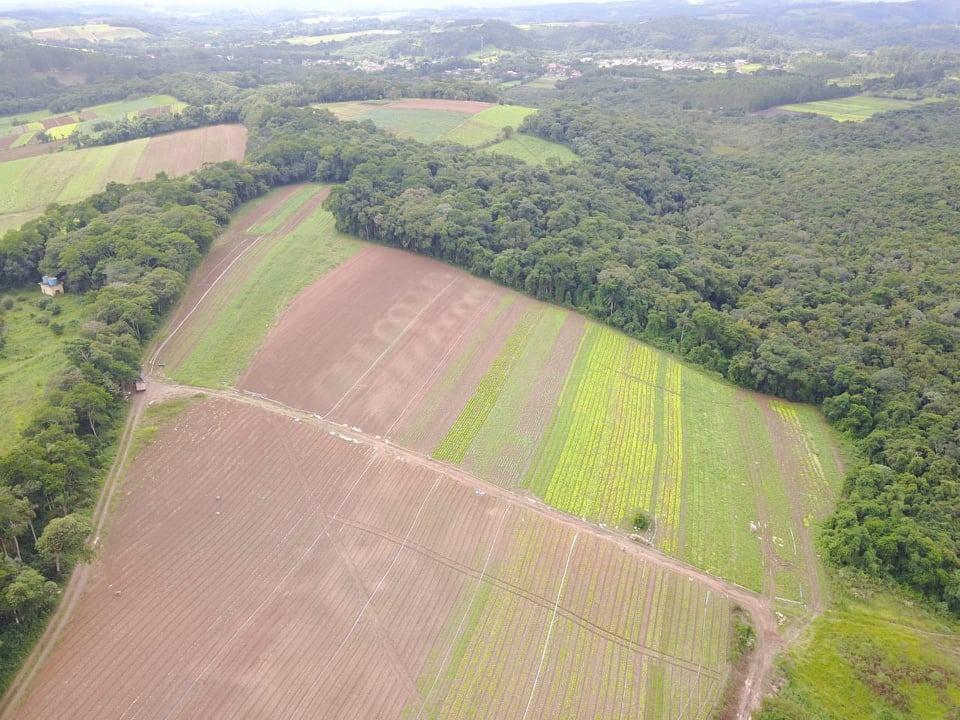 c. terenos de 1.200 m2 por apenas 33 mil reais em ibiuna