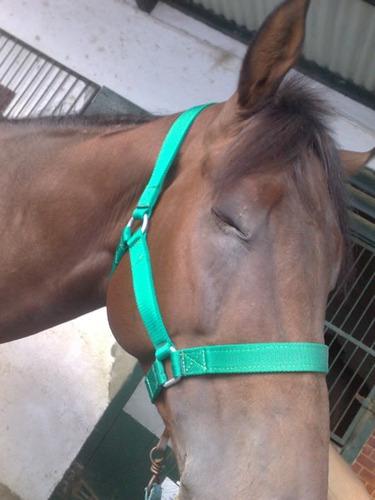 caballo - bozal + cabresto (adulto) muy resistentes!!!