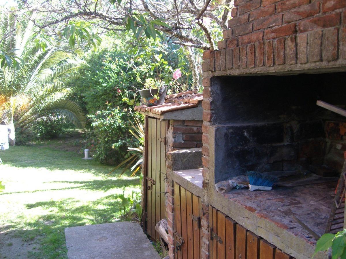 cabaña con palmera