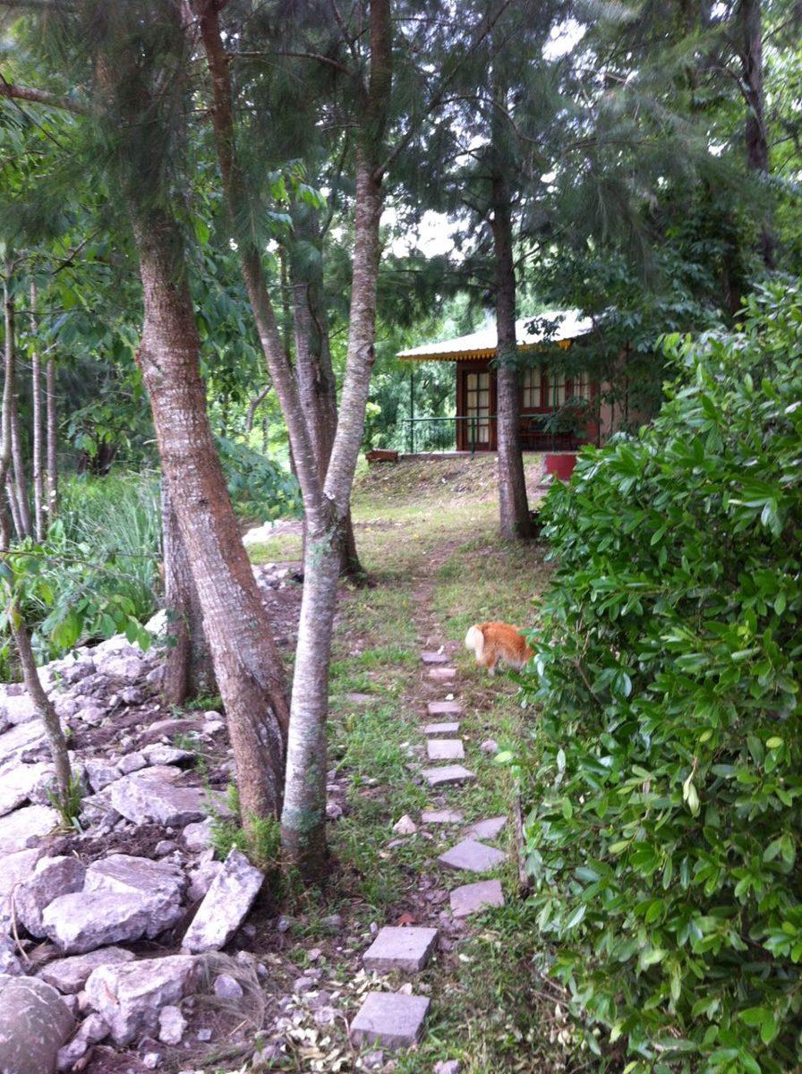cabaña en delta tigre carabelas 800