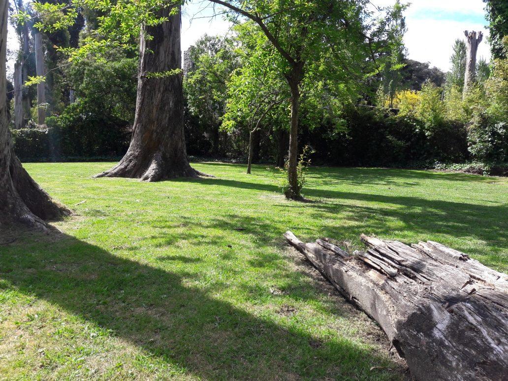 cabaña en lo mejor de bosques de peralta ramos