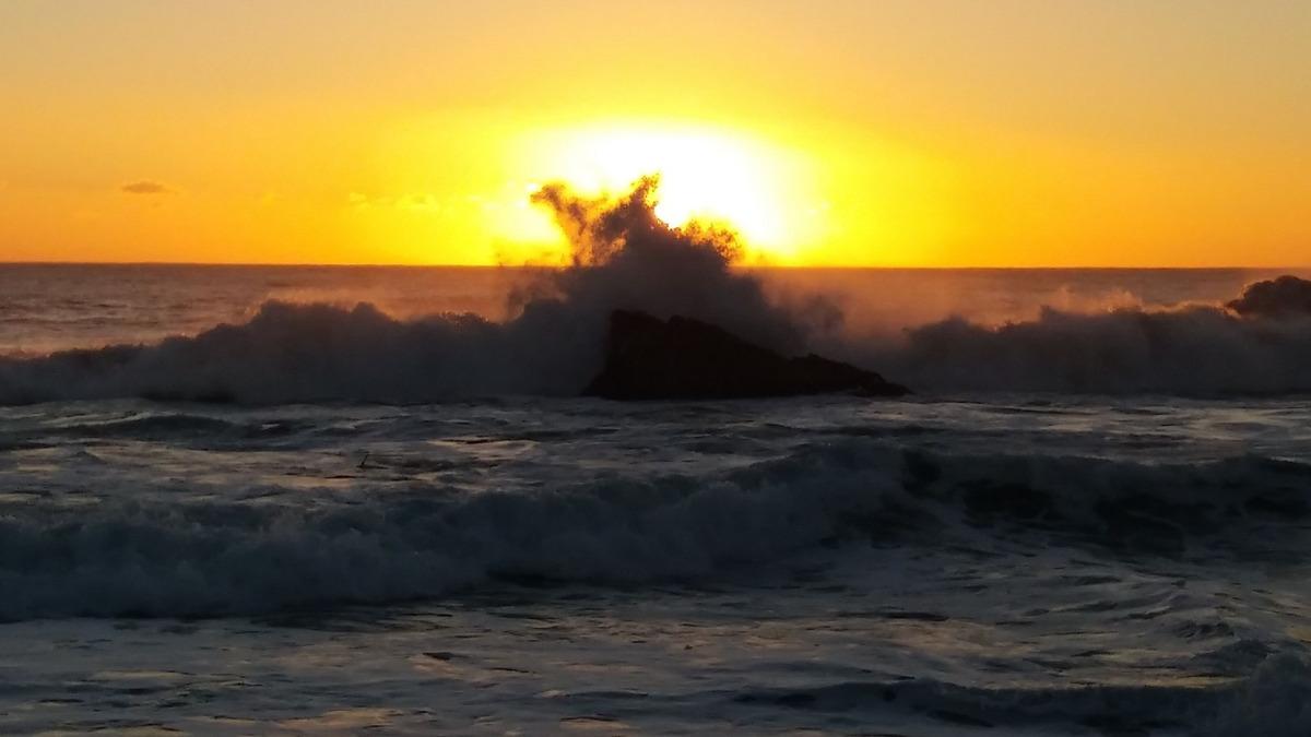 cabaña en pelluhue cardonal. en  primera linea de la playa..