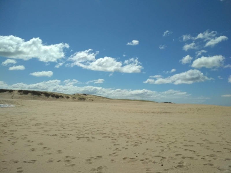 cabaña equipada para 4 personas playa arachania la paloma