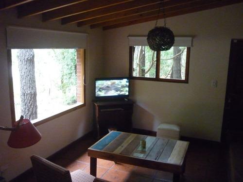 cabaña: excelente ubicación solo enero y febrero sin mascota