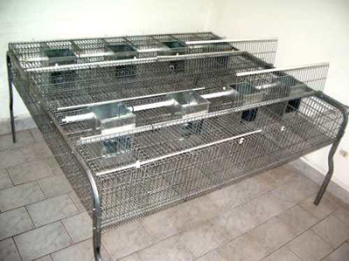 cabaña santamaria jaulas importadas p/ producción de conejos