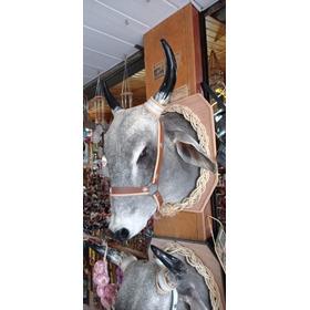 Cabeça De Boi Cranio Porta Aguardente 2 L De Reservatório
