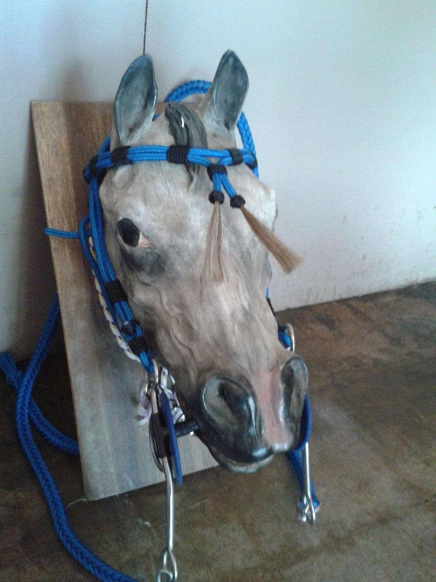 Cabezada driza con motas aperos para caballos de coleo for Cabezadas para caballos