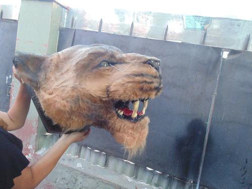 cabezas de animales (ficticias)