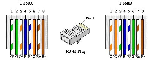 ... amazing cat 5 wiring diagram a or b photos wiring diagram ...