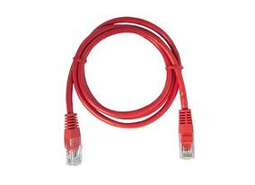 precio patch cord cat 6 amp peru