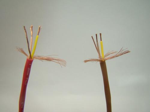 cabo mini xlr fêmea x fêmea 2m mogami amphenol xlr f p10m