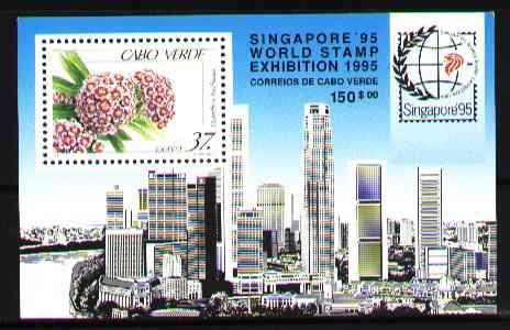 cabo verde 1995 - flores - expo cingapura - bloco
