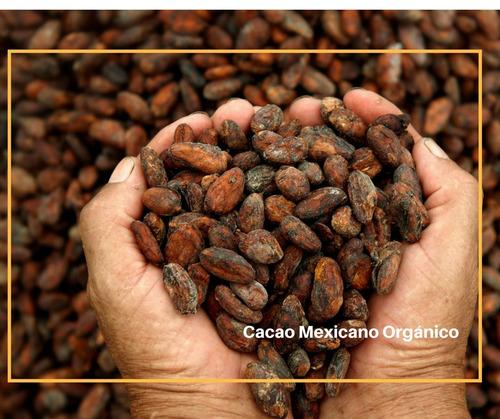 cacao en polvo orgánico 200 gr
