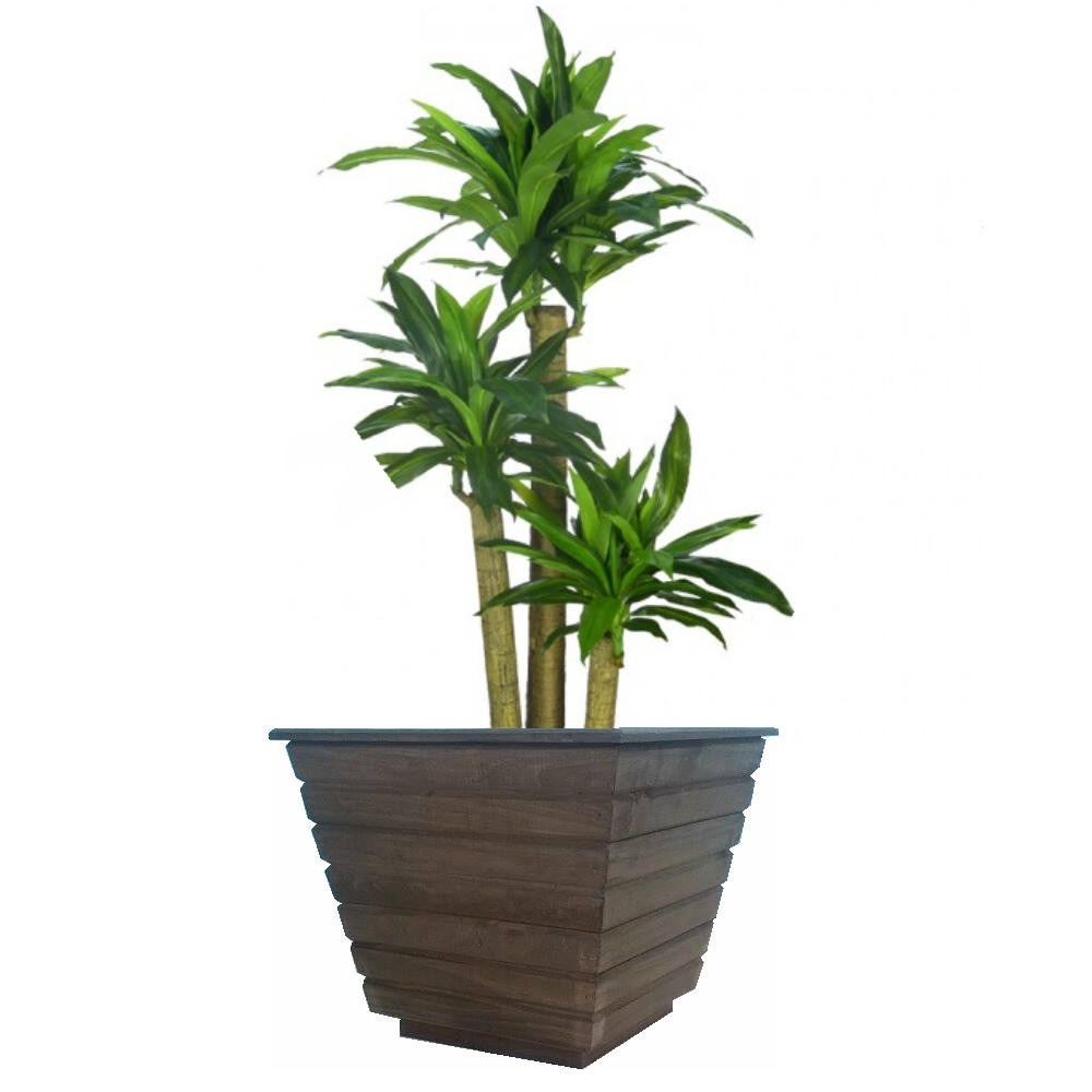 Cachepo de madeira r stico grande vaso plantas jardim r for Vaso grande