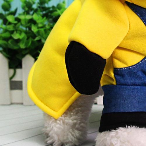 cachorro fantasia roupa
