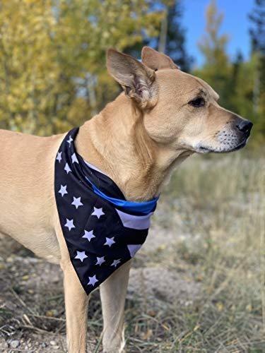 cachorro nativo delgada linea azul bandana perro | paquete