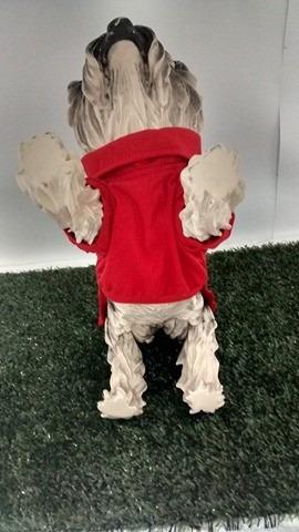 cachorro roupas cachorro roupas