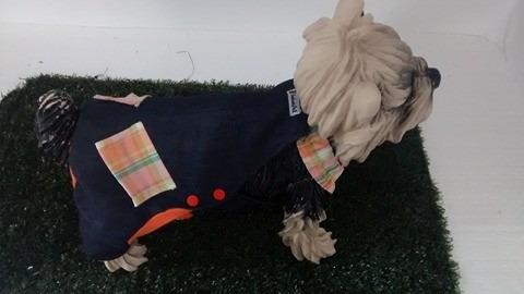 cachorro roupas cachorros