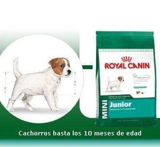 cachorro royal canin perros