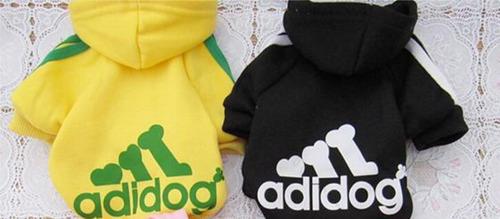 cachorros casaco casaco