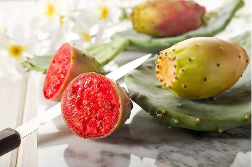 cactos comestiveis (frutos) vermelho ( cultivo em vaso )