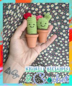 Cactus nopal   Cactos e suculentas, Cacto de crochê, Trabalhos manuais   284x239