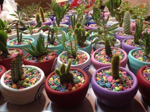 cactus consuculentas decoradas en macetas artesanales.