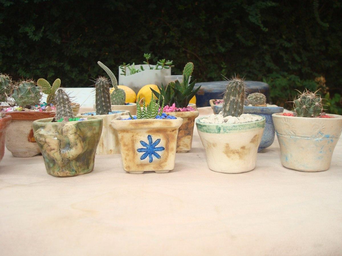 cactus y crasas en macetas de ceramica artesanales