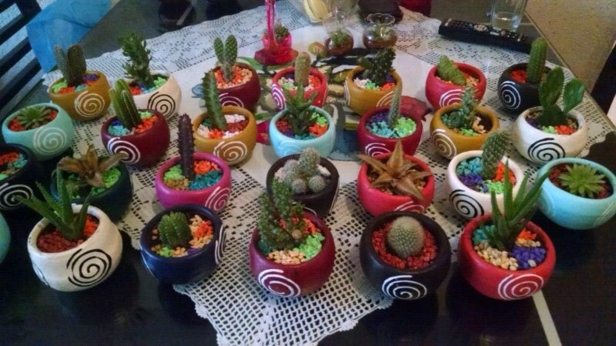 Cactus y suculentas miniatura decorados en maceta 30 for Macetas miniatura