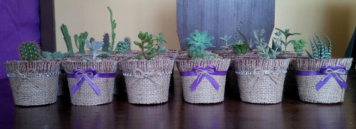 cactus y suculentas souvenirs precio por mayor