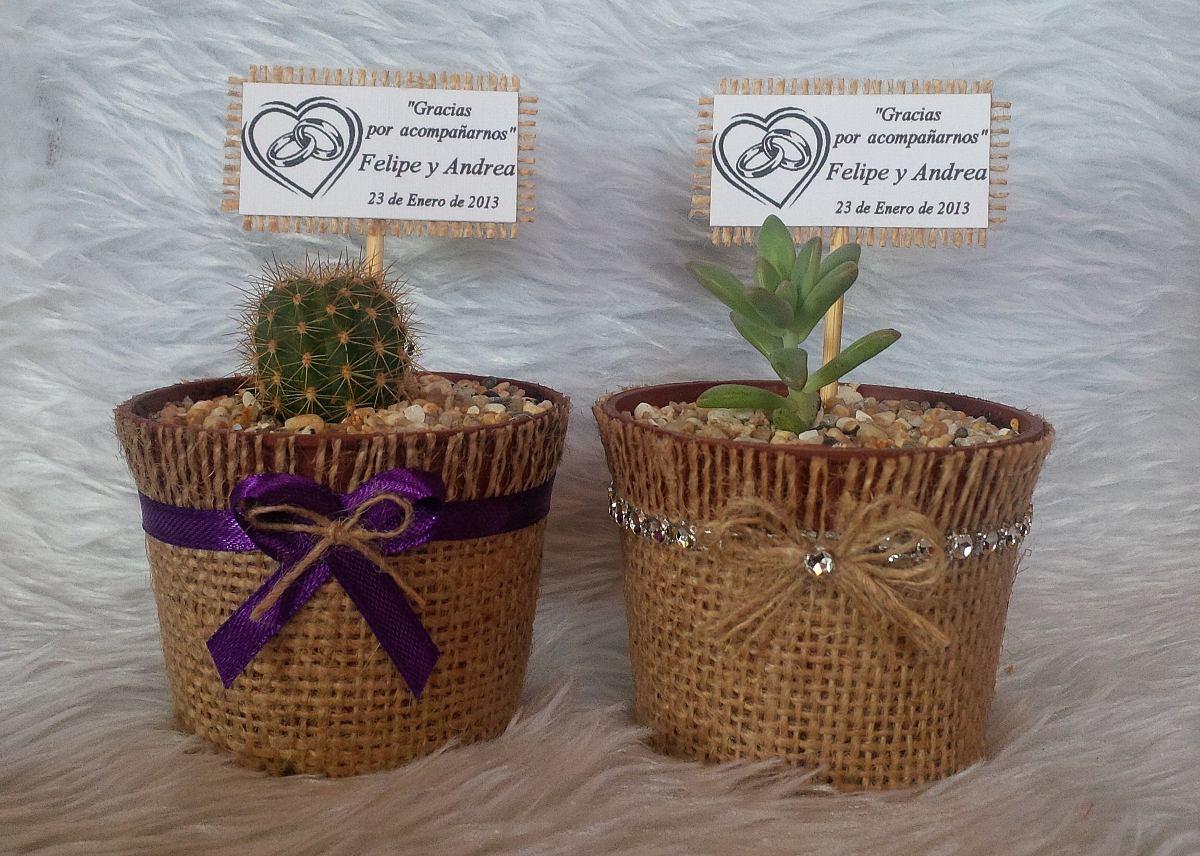 cactus y suculentas souvenirs precio por mayor On cactus y suculentas por mayor