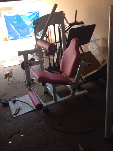 cadeira extensora fitness