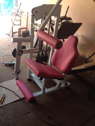 cadeira flexora e extensora conjugada swiso fitness