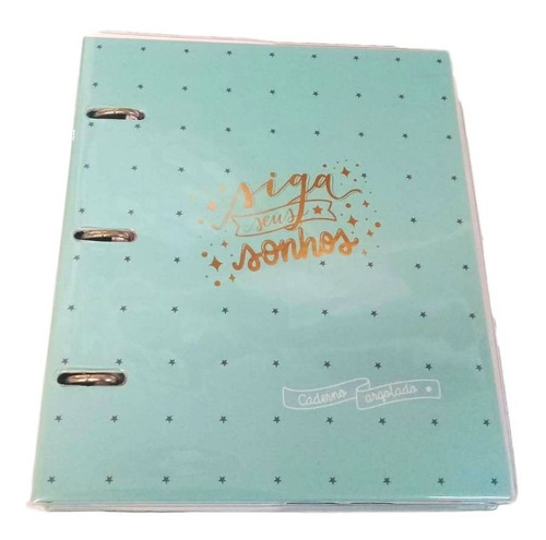caderno fichário argolado 12 mat-capa pvc - verde estrelas