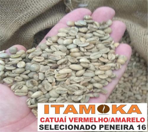 café cru 26 kg para torrar em casa artesanalmente qualidade