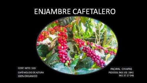 café enjambre cafetalero