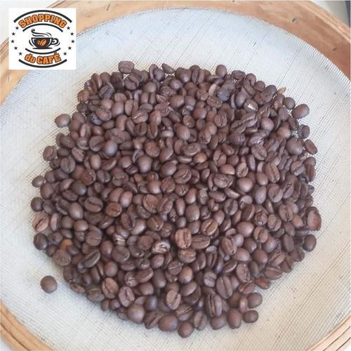 café máquina expresso grãos torrado 21kg gourmet certificado