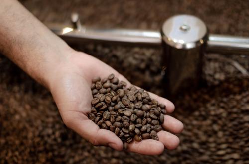 café orgánico de chiapas mezcla sagrada