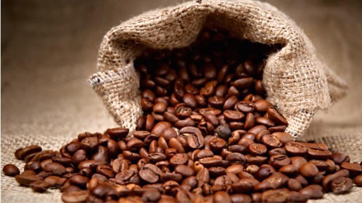 Resultado de imagen para cafe grano
