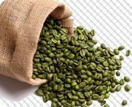 café verde por mayor para cafeterías, hoteles
