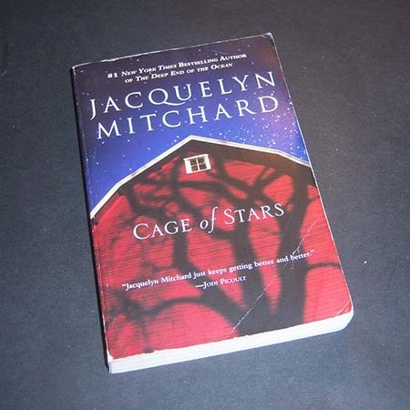 cage of stars. jacquelyn mitchard