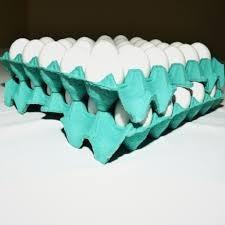 caixa bandeja de ovos compra (200 ) mais barata