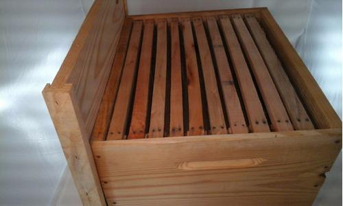 caixa de abelha ninho +10 quadros