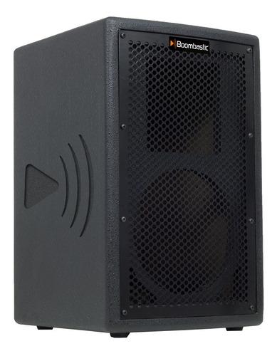 caixa multiuso profissional 2 vias 1x8 boombasticc