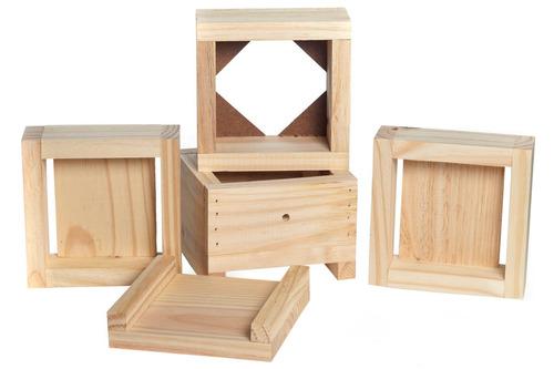 caixa para abelhas jataí + brindes promoção de inverno